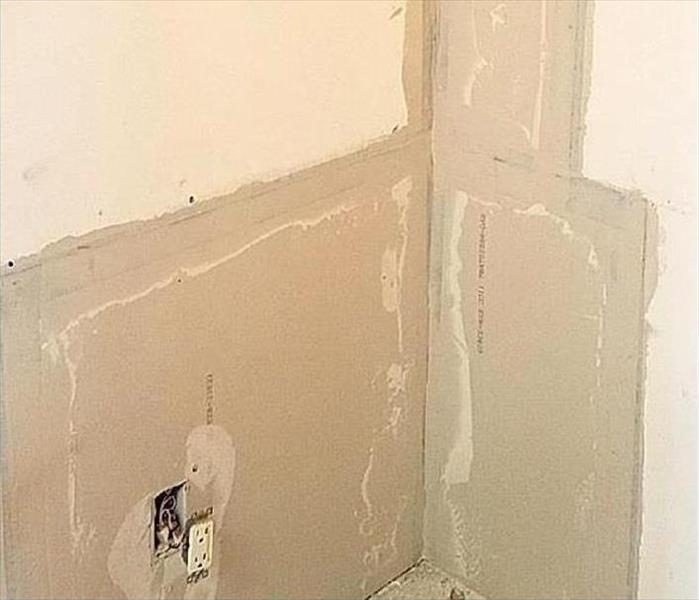 Mold Damage and Remediation in an Agoura Home After