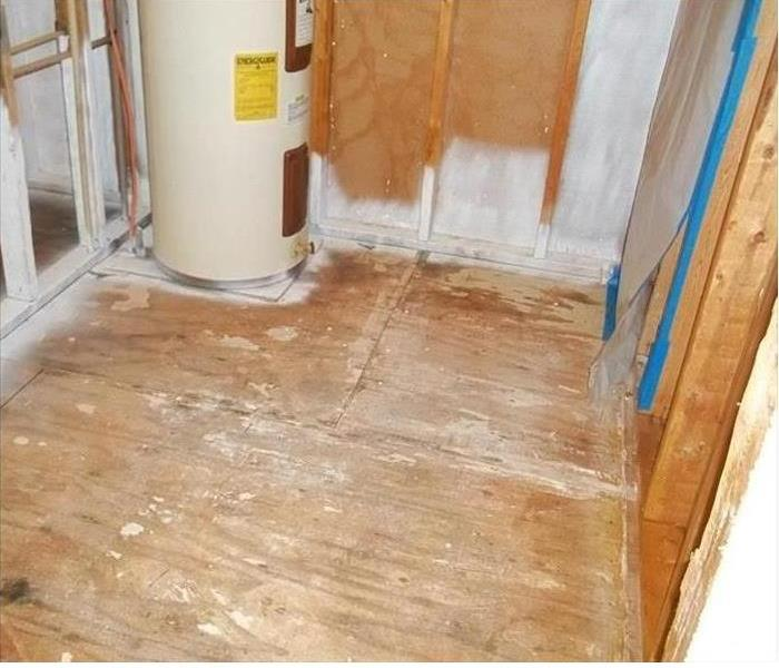 Agoura Mold Remediation in a Vacant House After