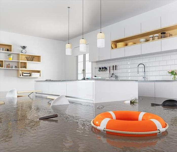 flooded kitchen with a life preserver
