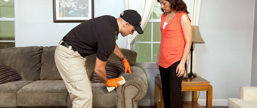 Agoura, CA carpet upholstery cleaning