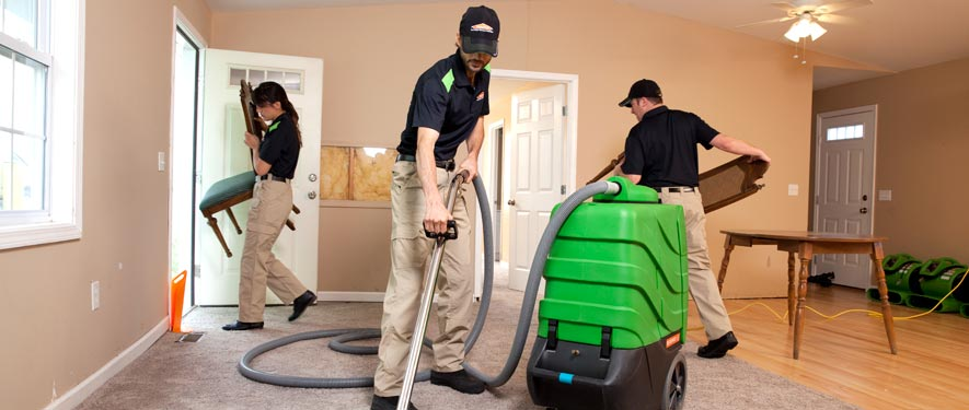 Agoura, CA cleaning services